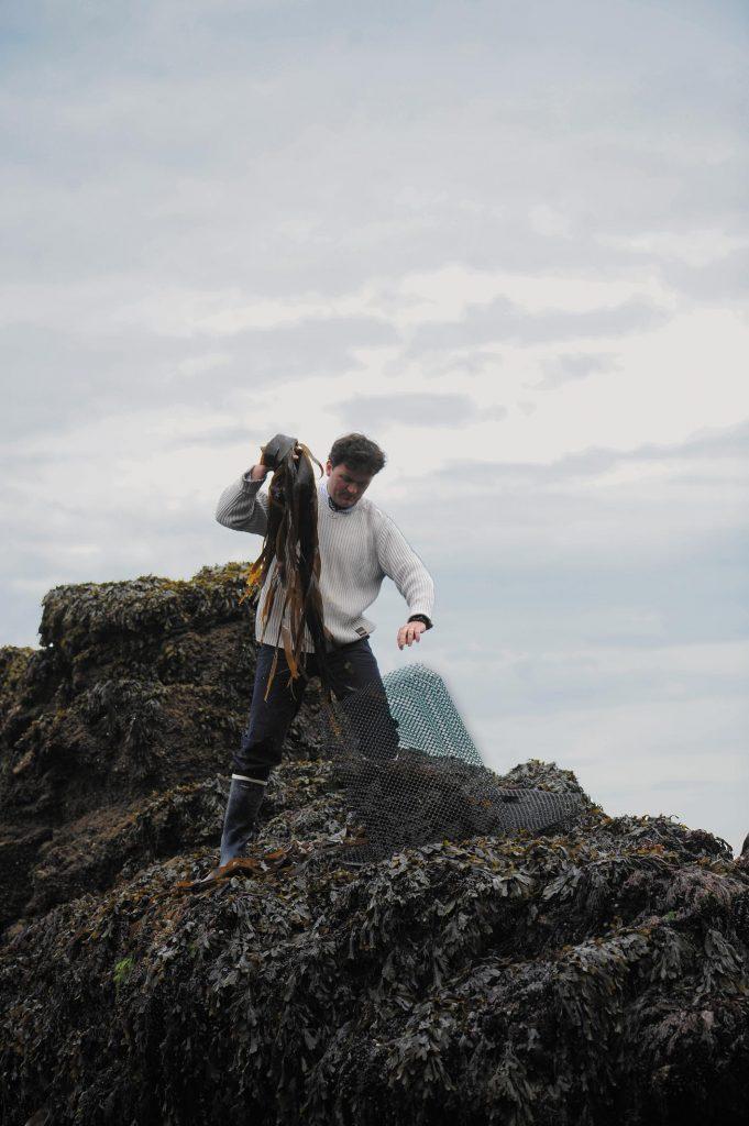 Culture de l'ormeau sur l'Ile de Groix