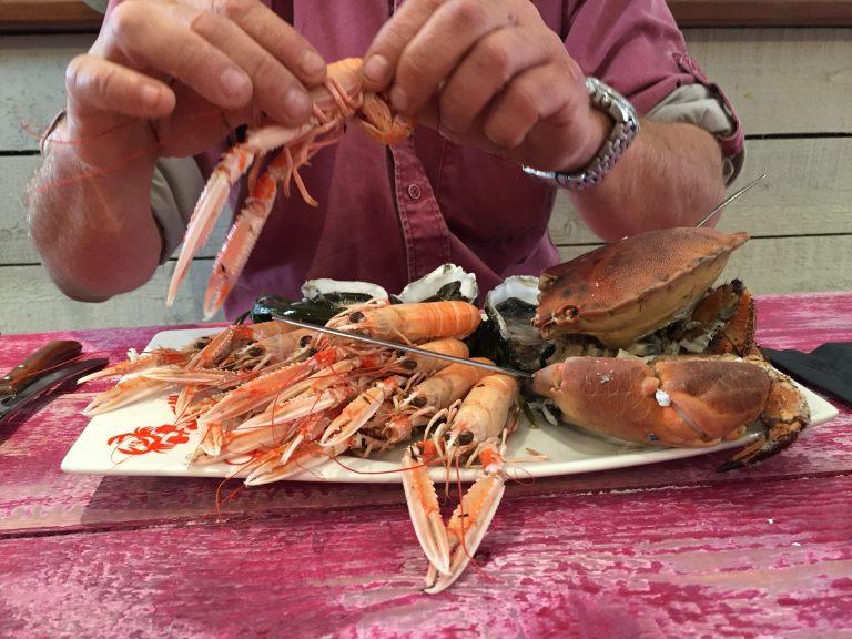 Port de pêche de Lorient, dégustation de langoustine et crabes