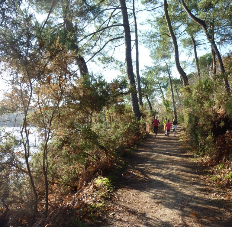 En courant, en marchant, en pédalant, empruntez le chemin le long des deux étangs du Ter.