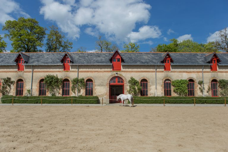 Hennebont, Haras National