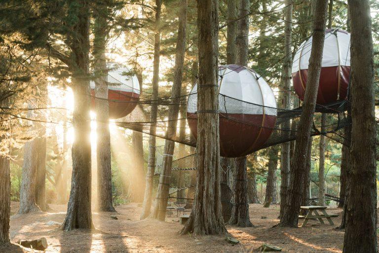 Hébergement insolite les nids du Parcabout de l'île de Groix