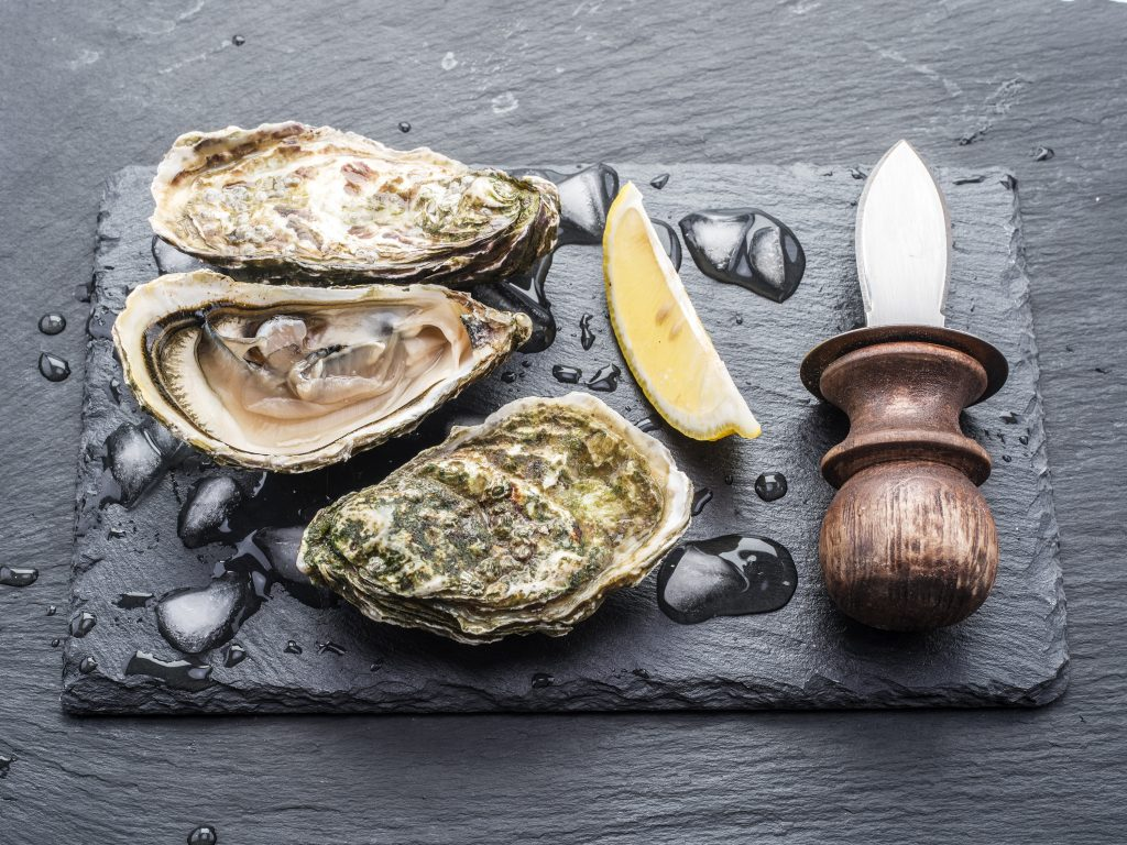 Lorient, dégustation d'huîtres