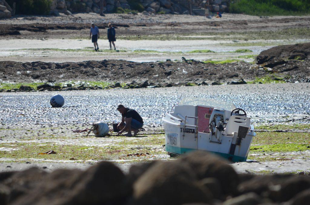 Pêche à pied au Fort-Bloqué