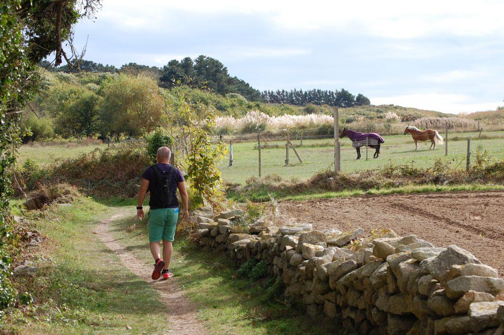 Randonnée dans les chemins de campagne