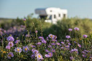 Visiter Lorient Bretagne Sud en camping-car