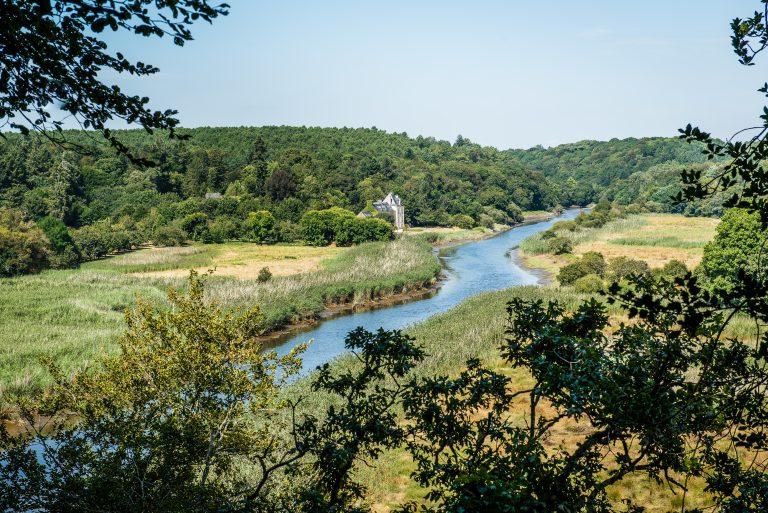 rivière et château en campagne