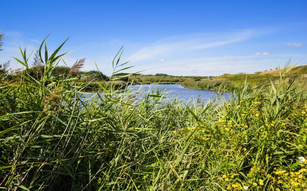 Guidel, étang du loch