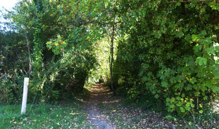 Chemin creux de randonnée Le Roze à Quéven