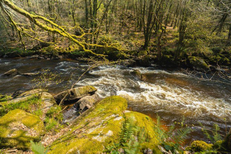 Rivière le Scorff dans la Forêt de Pont Calleck à Plouay