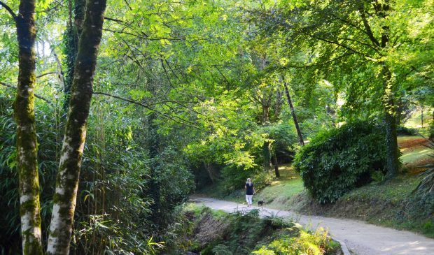 Hennebont, promenade au Parc de Kerbihan