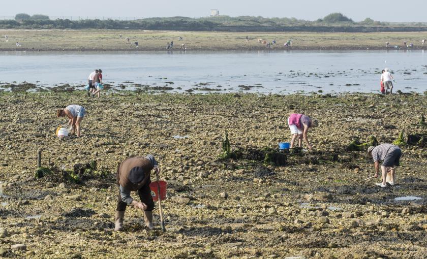 pêcheurs plage riantec