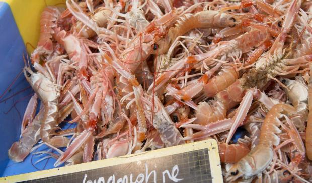 © Xavier DUBOIS. Caisse de langoustine chez Moulin Marée au port de pêche de Lorient.