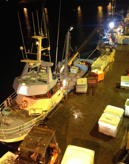 Port de pêche de Lorient, débarquement du poisson