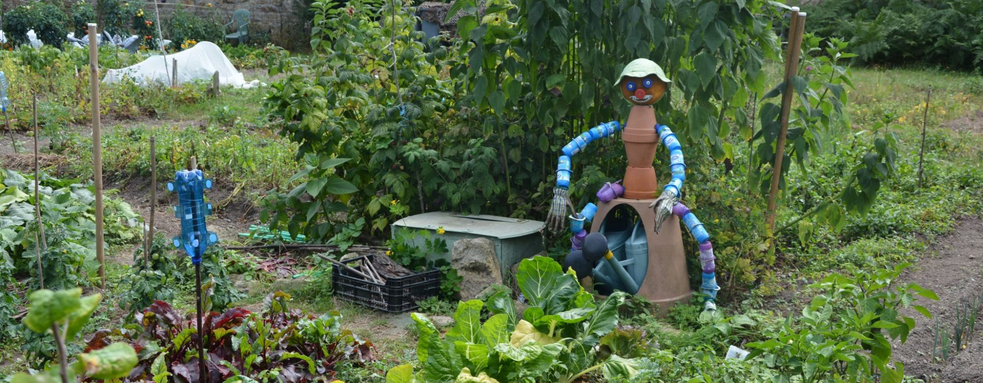 Plœmeur, potager dans les jardins partagés du domaine de Soye.