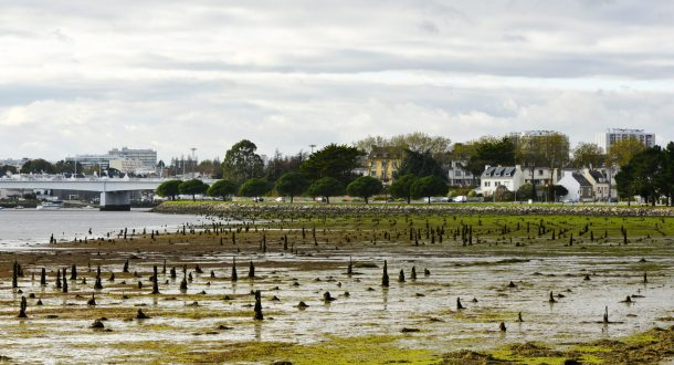 Panorama du parc à bois de Lanester