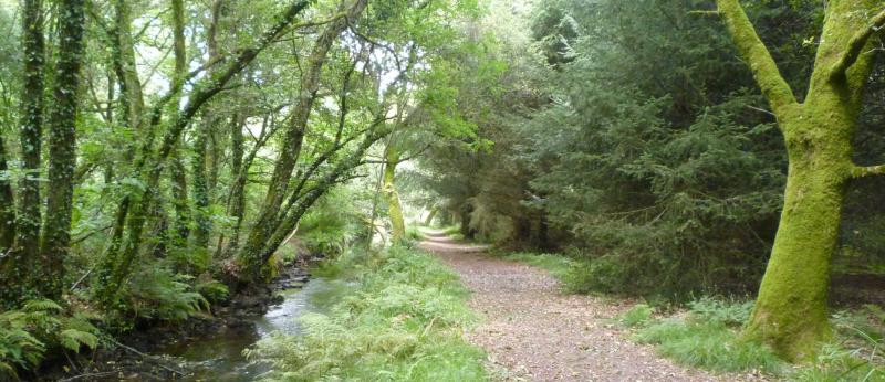 La rivière du Roc'h et son chemin de randonnée à Languidic