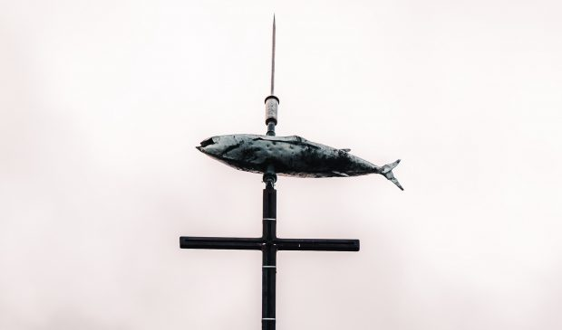 ile-de-groix-girouette-clocher-eglise-thon-lezbroz.jpg