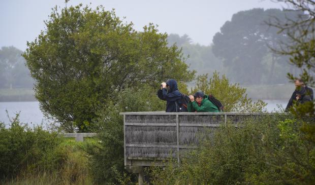 Locmiquélic, couple observant les oiseaux avec des jumelles à la réserve de Pen Mané