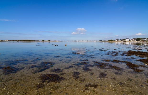 Petite mer de Gâvres marée basse pêche à pied coquillages rigadeaux, palourdes, bigormeaux
