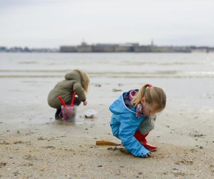 Petite mer de Gâvres, découverte pêche à pied aux coquillages