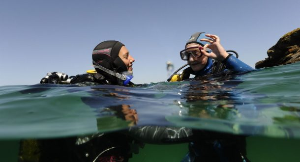 Plongeurs, Larmor Plage