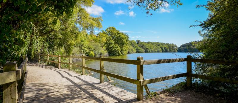 Sentier autour de l'étang du Ter, Ploemeur